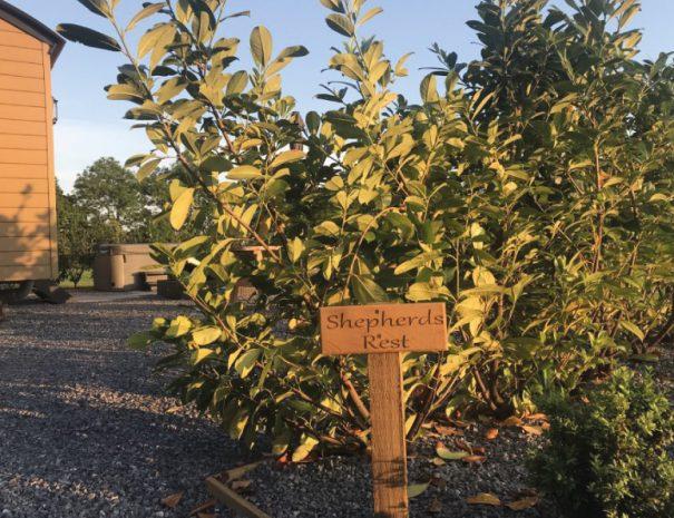 Shepherds-Rest-secret-garden
